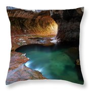 The Subway Sacred Light Throw Pillow by Bob Christopher