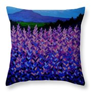 The Sugar Loaf - Wicklow - Ireland Throw Pillow