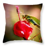 The Summit Throw Pillow