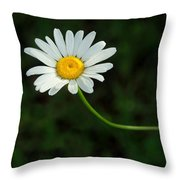 The Sun Is Better Over Here Throw Pillow