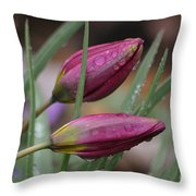 The Sun Will Come Out Tomorrow Throw Pillow
