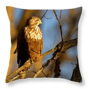 The Sundowner Throw Pillow