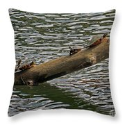 The Sunshine Highway Throw Pillow