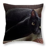 The Supervisor Throw Pillow by Luther Fine Art