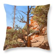 The Survivor Throw Pillow