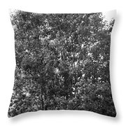 The Survivor Tree In Black And White Throw Pillow