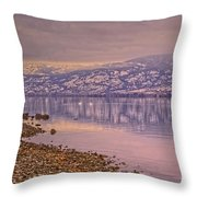 The Swans On Winter Solstice Throw Pillow