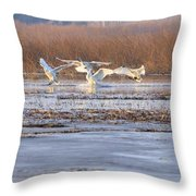 The Swans Return Throw Pillow
