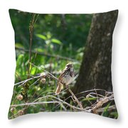 The Sweetest Song Throw Pillow