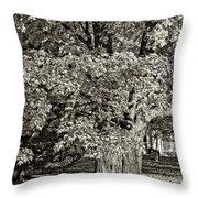The Swinging Tree Sepia Throw Pillow