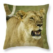The Tail Rules Throw Pillow