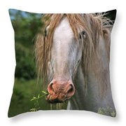 The Taste Of The Spring Throw Pillow