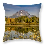 The Tetons And Fall Colors Throw Pillow