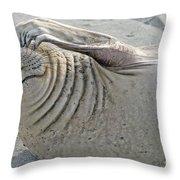 The Thinker - Elephant Seal On The Beach Throw Pillow