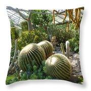 The Three Cacti Throw Pillow