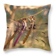 The Three Dragonflies  Throw Pillow