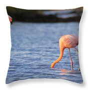 The Three Flamingos Throw Pillow