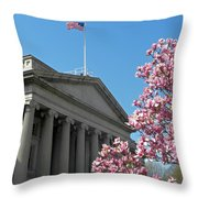 The Treasury Building Throw Pillow
