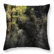 The Tree Across The River Throw Pillow