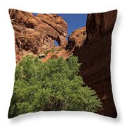 The Tree And The Window Throw Pillow