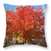 The Tree By The Church - Photograph Throw Pillow