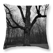 The Tree In The Park Throw Pillow
