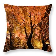 The Trees Dance As The Sun Smiles Throw Pillow