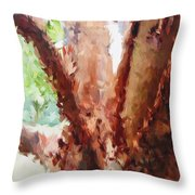 The Trees In Spring Time Throw Pillow