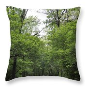 The Trees Of Illinois Throw Pillow