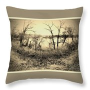 The Trees Of Steamboat Rock Throw Pillow by Garren Zanker