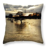 The Trent Washlands In Full Flood Throw Pillow
