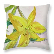 The Trickiness Of Yellow Throw Pillow