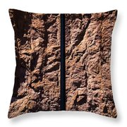 The Triumph Of Man Throw Pillow