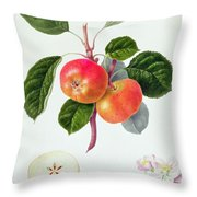 The Trumpington Apple Throw Pillow by William Hooker