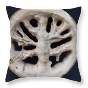 The Trunk Of Time Throw Pillow