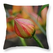The Tulip Bud Throw Pillow