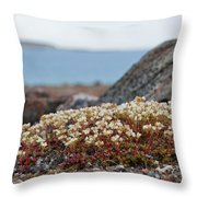 The Tundra... Throw Pillow