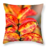 The Turning Season Throw Pillow
