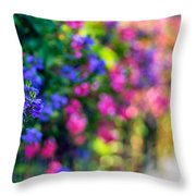 The Twilight Zone...a Journey Thru Color Throw Pillow