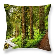 The Twisting Path Winding Through Paradise  Throw Pillow