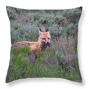The Two-fer Throw Pillow