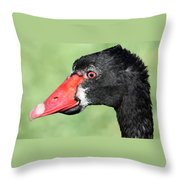 The Ugly Duckling Throw Pillow by Shane Bechler