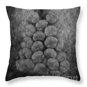 The Ultimate Medicine... Throw Pillow