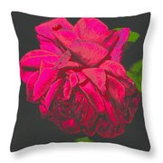 The Ultimate Red Rose Throw Pillow