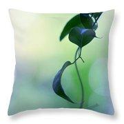 The Unbearable Lightness Of Being. Natural Wonders Throw Pillow