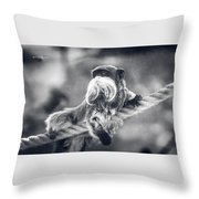 The Unbelievable Truth Throw Pillow
