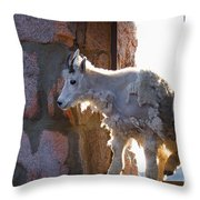 The Unexpected Guest Throw Pillow