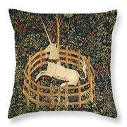The Unicorn In Captivity Throw Pillow