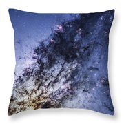 The Universal Migrator Throw Pillow