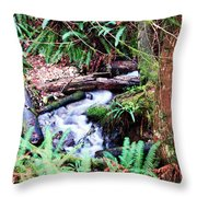 The Unknown Creek Throw Pillow